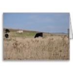 cows_in_a_field_greeting_card-rf4582e1e8a0b45cfa3d416602bfd4ab9_xvuak_8byvr_152