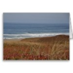 point_reyes_waves_greeting_card-ra992fcc342df4f09a5fa4096da2e6383_xvuak_8byvr_152