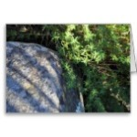 zen_rock_greeting_card-re76a7cfd49a440dabdcaf56d8fc495b9_xvuak_8byvr_152